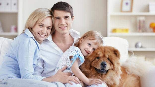 Wills & Trusts dog-young-family Direct Wills West Ealing